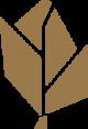 Logo-bien-etre-edenwall-referencement-site